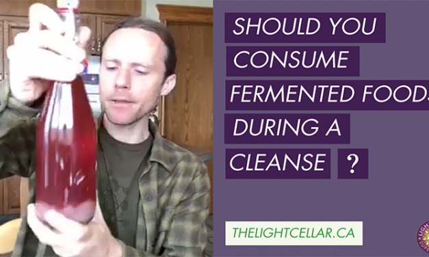 Should You Consume Fermented Foods During A Cleanse ?