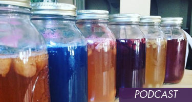 3 Reasons Why You Should Make Your Own Kombucha