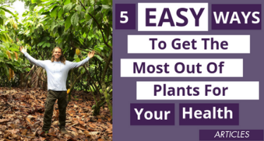 5 Easy Ways To Get The Most Out Of Plants For Your Health
