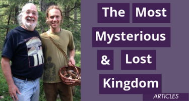 The Most Mysterious And Lost Kingdom – Fungi