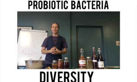 the Wonders & Diversity of Probiotic Bacteria