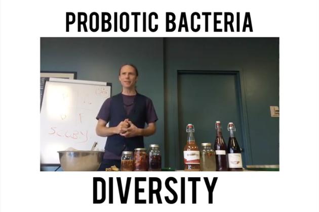 the Wonders & Diversity of Probiotic Bacteria